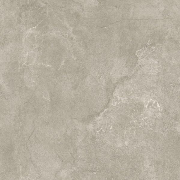 Kinorigo – Struzzo Fossil