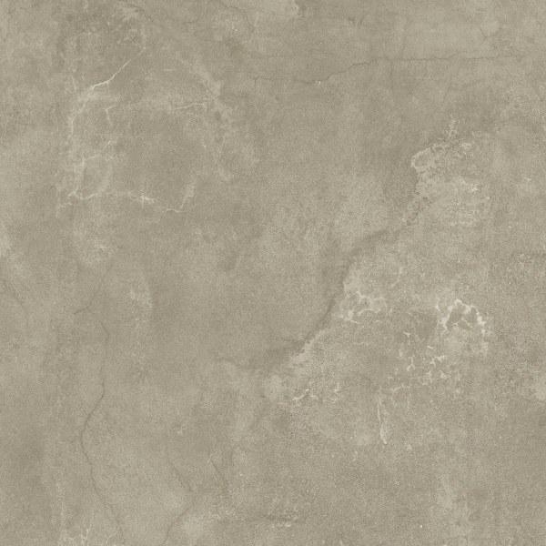 Kinorigo – Struzzo Sahara